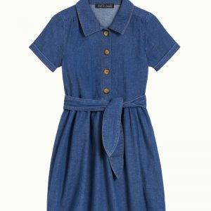 Petit Louie: Olive Dress Chambray