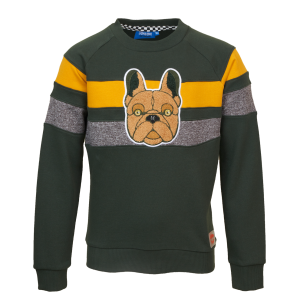 SOMEONE: Sweater CHIEN groen CHIEN-SB-16-C_DARK-GREEN