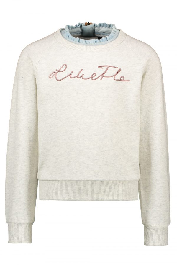 F109-5317 Like FLO: Sweater ecru melee