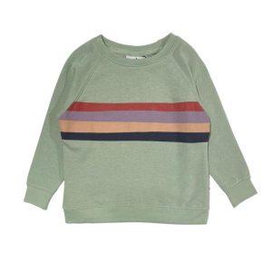 Cos i Said So: Sweater RETRO STRIPE groen